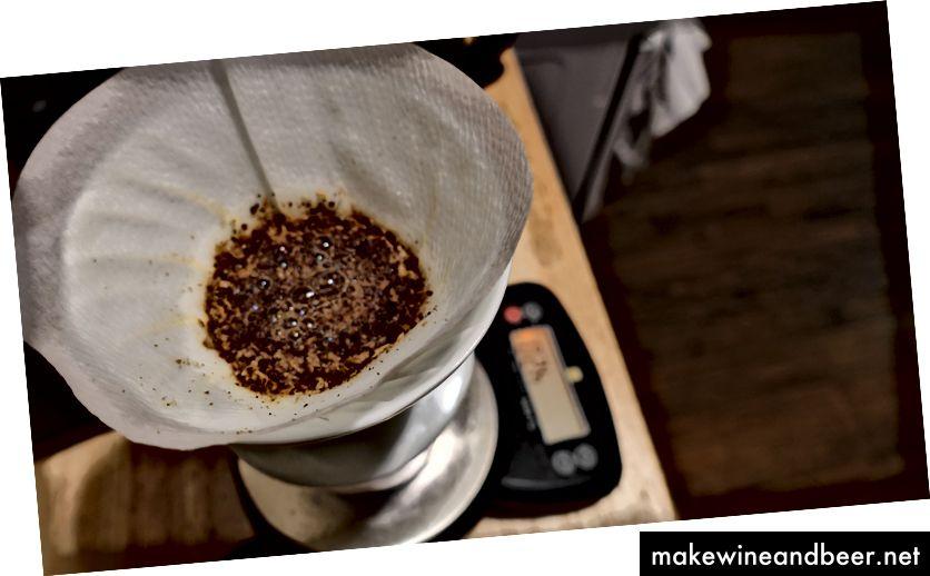 Blühender Kaffee