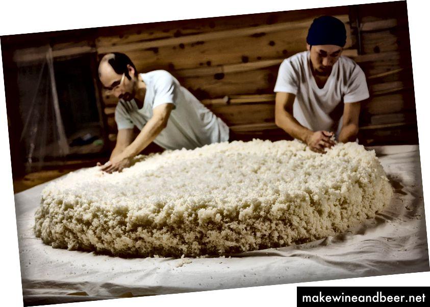 برنج برای تولید غذای آماده است