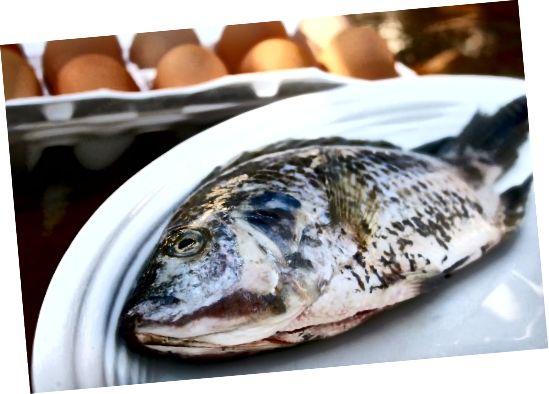 생선과 계란의 콜린 함량이 높습니다.
