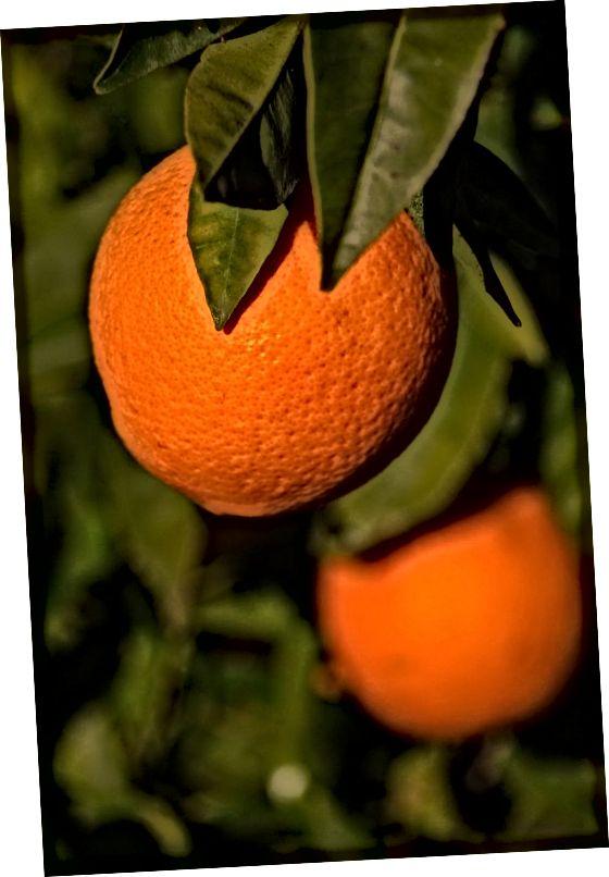 Ένα ηλιόλουστο και λαμπερό λάδι, το πορτοκαλί λάδι προάγει την αίσθηση καλής ποιότητας και φέρνει ένα ζωντανό φρέσκο άρωμα στην Κολωνία.