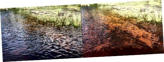 Νερό στη λίμνη Czarne, Marki, Πολωνία. Φωτογραφία στα δεξιά που τραβήχτηκε με φίλτρο πόλωσης, στα αριστερά χωρίς φίλτρο πόλωσης.