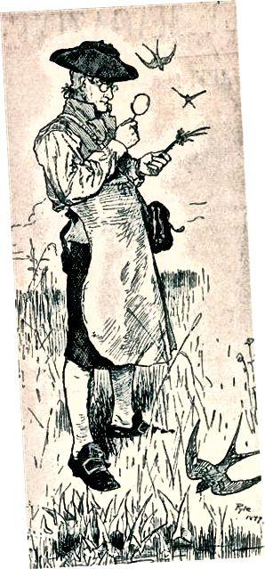 جان بارتام ، گیاه شناس اولیه آمریکا ، پوشیدن پیش بند