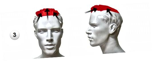 머리 깎기 ... 3 부
