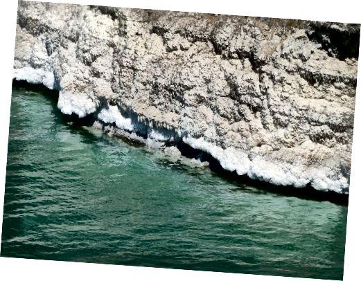 رسوبات نمکی دریا در ساحل اردن در دریای مرده.