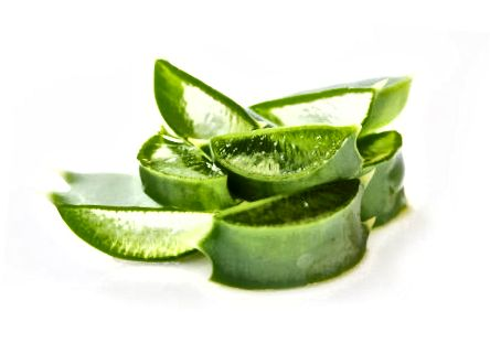 Aloe gel z rostliny.
