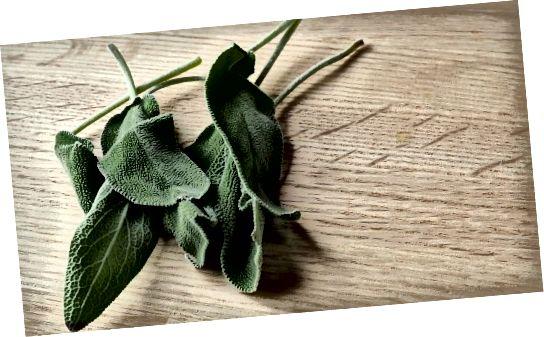 Šalvěj se používá při vaření a jako kadidlo, ale věděli jste, že to může také pomoci ztmavnout vlasy?