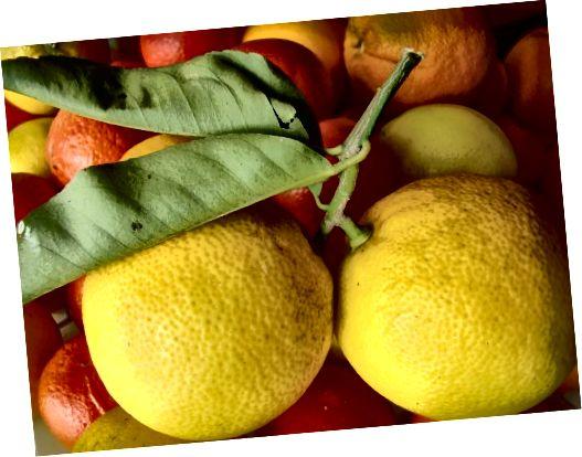 لیمو یکی از میوه هایی است که به عنوان مرکبات طبقه بندی می شود.