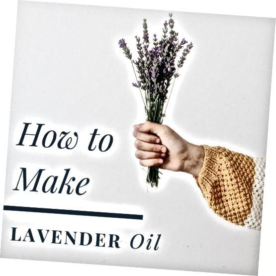 Jak si vyrobit levandulový olej doma