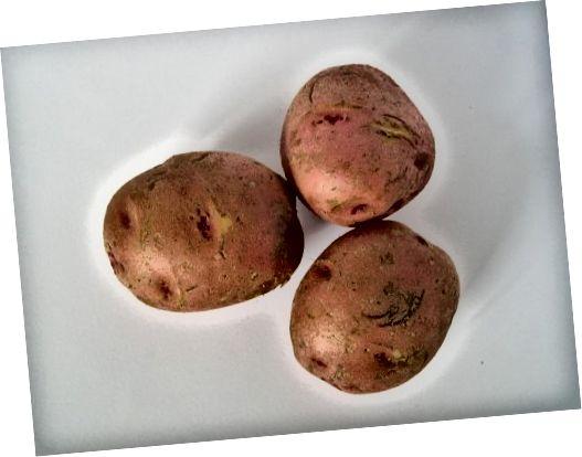 감자의 전분은 열을 끌어 내기 위해 작동합니다.