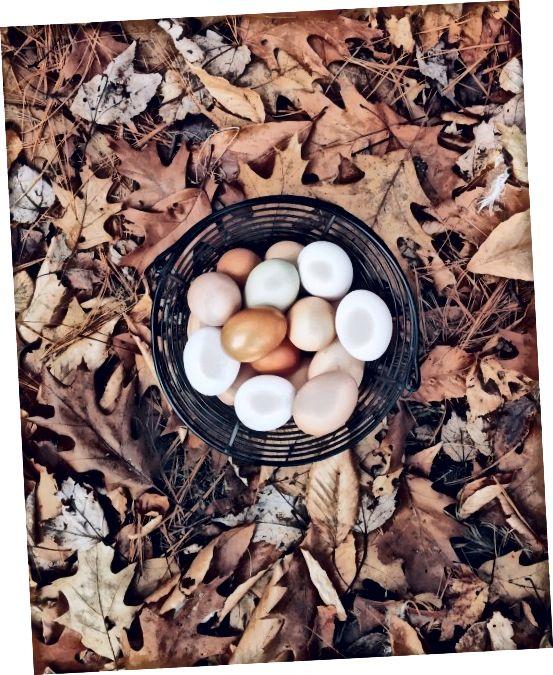 Τα λευκά αυγών μπορούν να εφαρμοστούν στο πρόσωπο ως μάσκα για να ελαχιστοποιηθεί η εμφάνιση ουλών ακμής με την πάροδο του χρόνου.