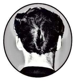 Το χτένισμα DA που προτιμούσαν οι λιπαστές ονομάστηκε για την ομοιότητά του με τα πίσω μέρη της πάπιας.
