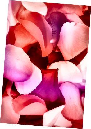 عطر گلبرگ طبیعی: گل سرخ ، اسطوخودوس و یاس باعث ایجاد روغنهای تزئینی زرق و برق دار می شوند. همچنین ممکن است از گیاهان دارویی مانند رزماری ، چوب صندل و آویشن استفاده شود.
