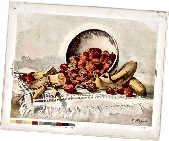 Մեյներ, Է. (Նկարիչ); L. Prang & Co. (հրատարակիչ) (Flickr: Ելակի և բանանները զամբյուղում) [Հասարակական տիրույթ] ՝ Wikimedia Commons- ի միջոցով
