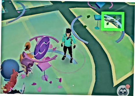 Pokemon-da Pokemon-ni tutish