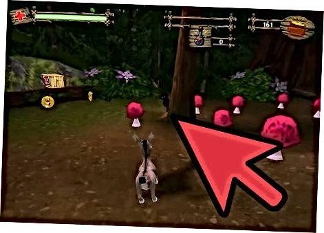 GameCube-dagi Shrek 2