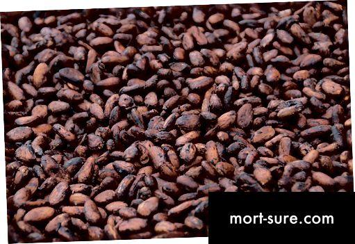Разлика между какао и шоколад