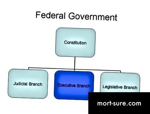 الفرق بين الحكومة الفيدرالية والحكومة الوطنية -1