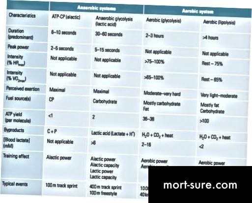 Rozdíl mezi aerobní a anaerobní glykolýzou