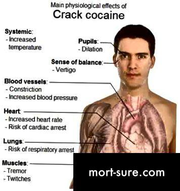 الكوكايين-النفسي-د