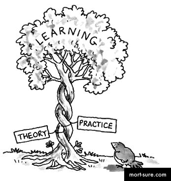 http://elasjoliedotcom.files.wordpress.com/2011/03/theory_practice_tree.jpg