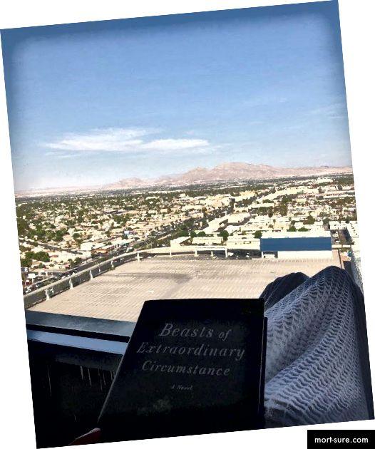 Вегас е и го прекарах в четене на книга.