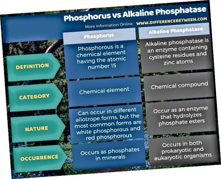 Fosfor va gidroksidi fosfataza o'rtasidagi farq jadval shaklida