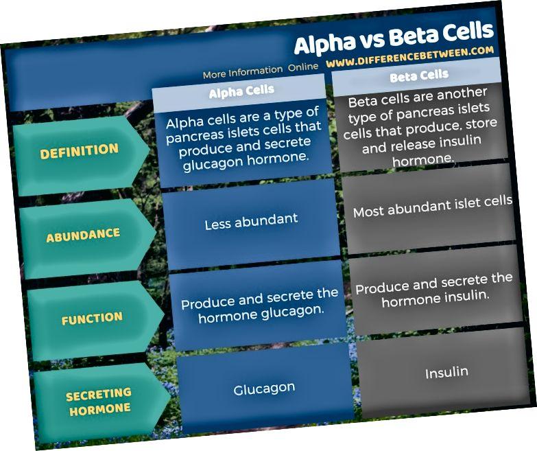 Unterschied zwischen Alpha- und Betazellen in Tabellenform