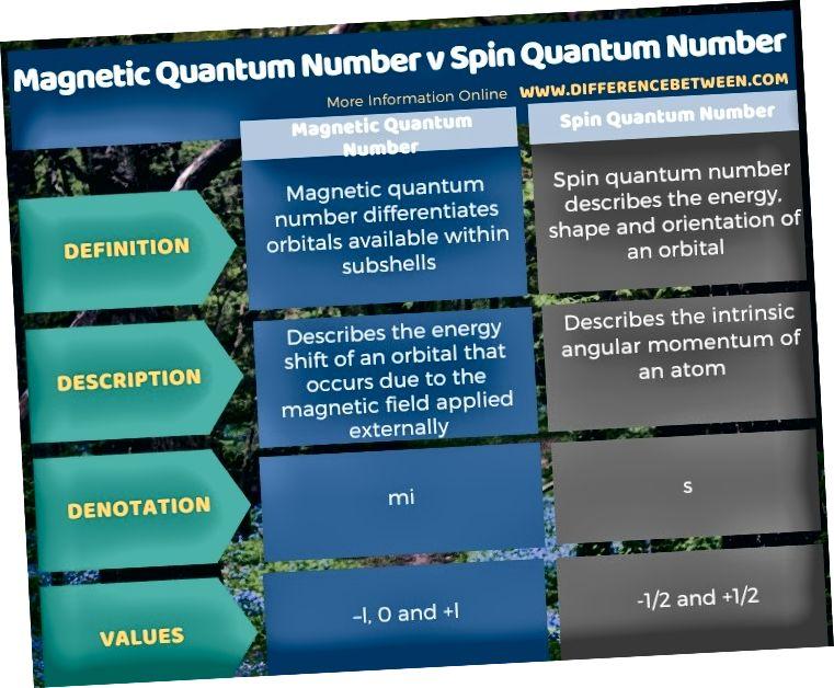 الفرق بين عدد الكم المغناطيسي ورقم الكم الدوران في شكل جدول