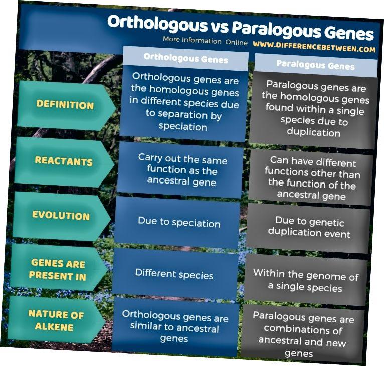 الفرق بين الجينات المتعامدة والأشكال في شكل جدول