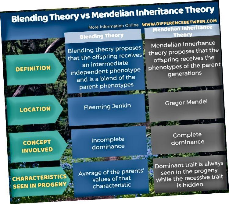 Разлика между теорията за смесване и теорията за наследството на Менделия в таблична форма