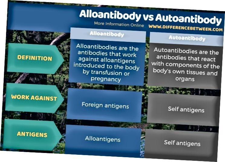 Աղբյուրի ձևով տարբերությունը `ալլոմանտոդի և ինքնաուտիզմի միջև
