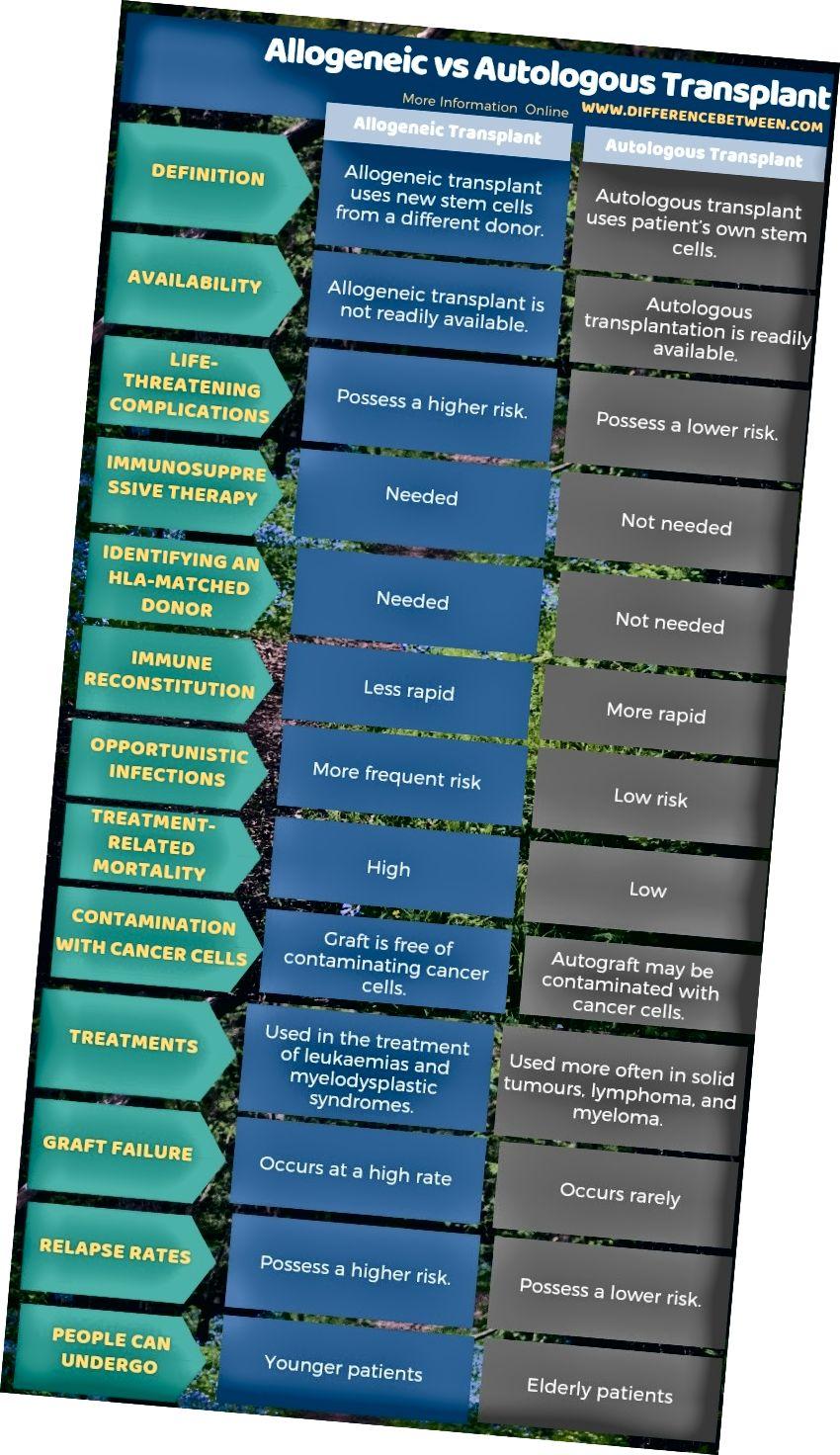 Unterschied zwischen allogener und autologer Transplantation in tabellarischer Form