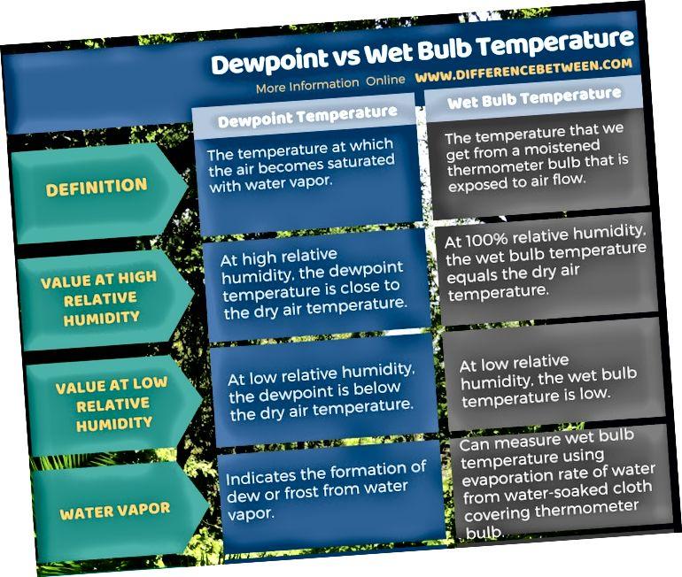 Rasos taško ir drėgnos lemputės temperatūros skirtumas lentelės pavidalu