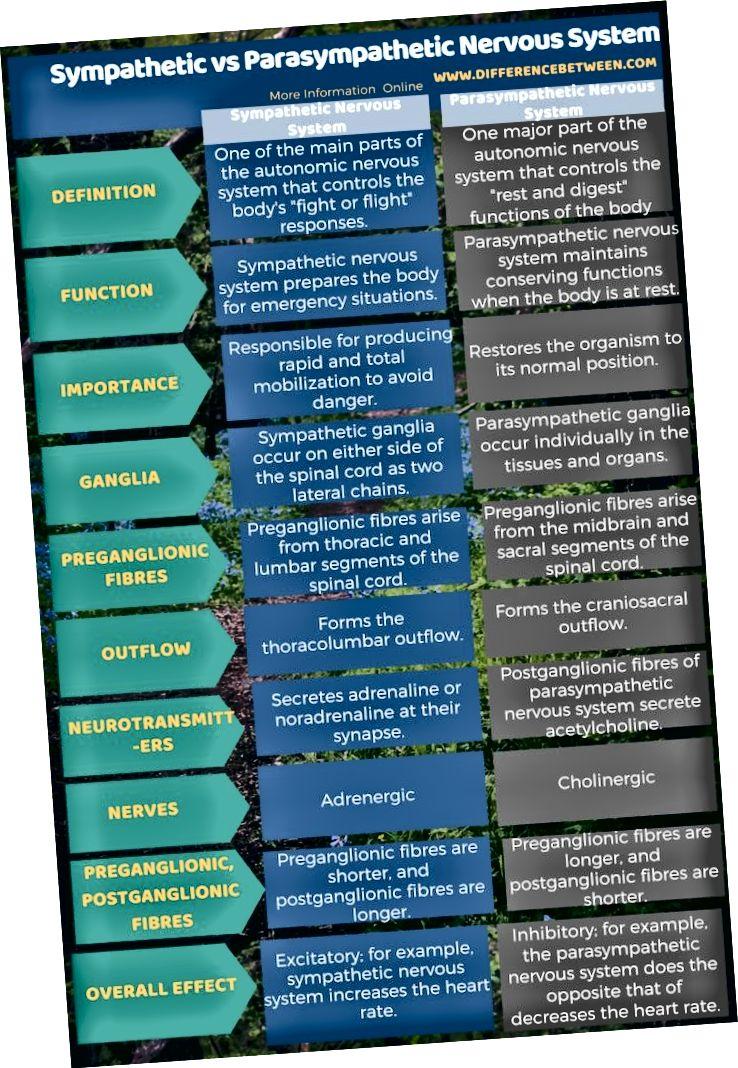 الفرق بين الجهاز العصبي السمبتاوي والجهاز السمبتاوي في شكل جدول
