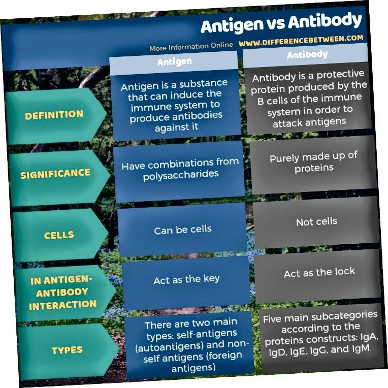 Διαφορά μεταξύ αντιγόνου και αντισώματος σε πίνακα