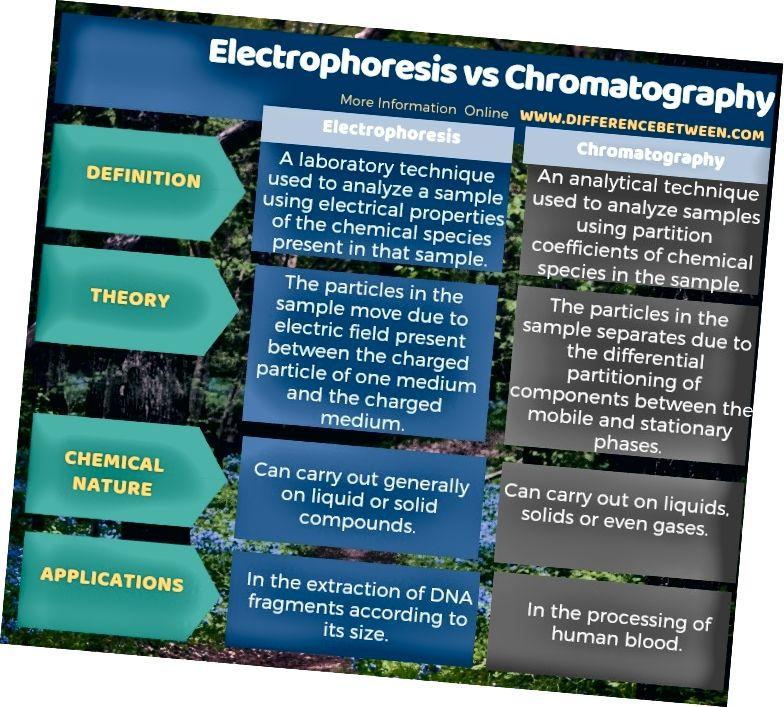 Forskel mellem elektroforese og kromatografi i tabelform
