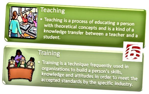الفرق بين التدريس والتدريب