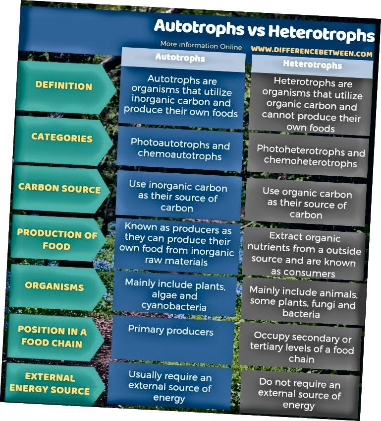 Διαφορά μεταξύ Autotrophs και Heterotrophs - Τυπική φόρμα