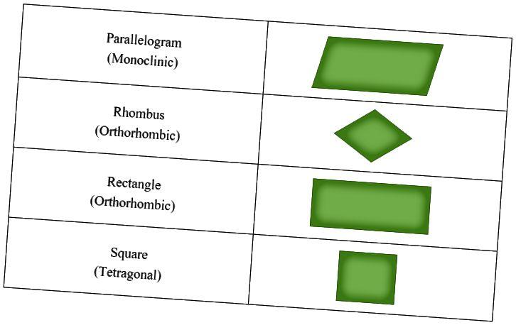 Peamine erinevus - ühiku rakk vs primitiivne rakk