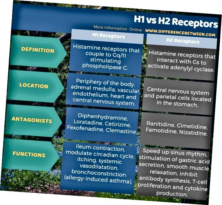 Atšķirība starp H1 un H2 receptoriem tabulas formā