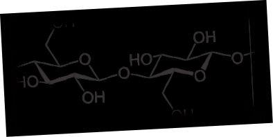 Разлика между целулоза и хемицелулоза