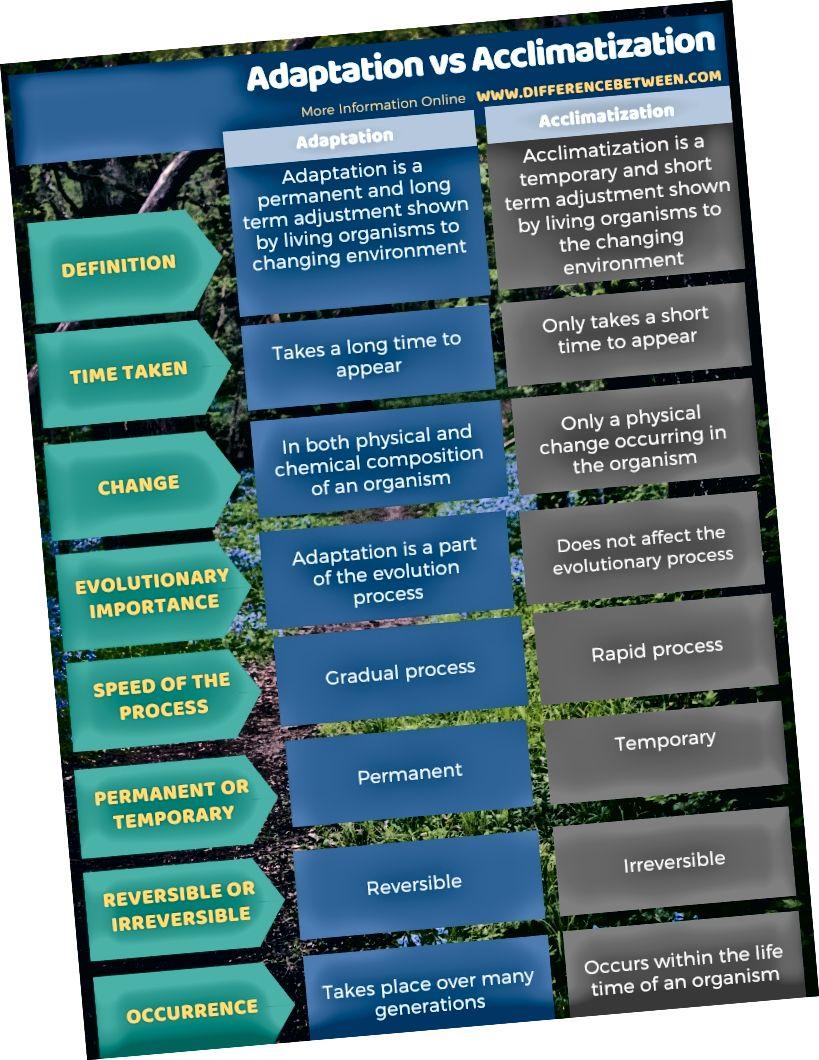 Unterschied zwischen Anpassung und Akklimatisation in Tabellenform