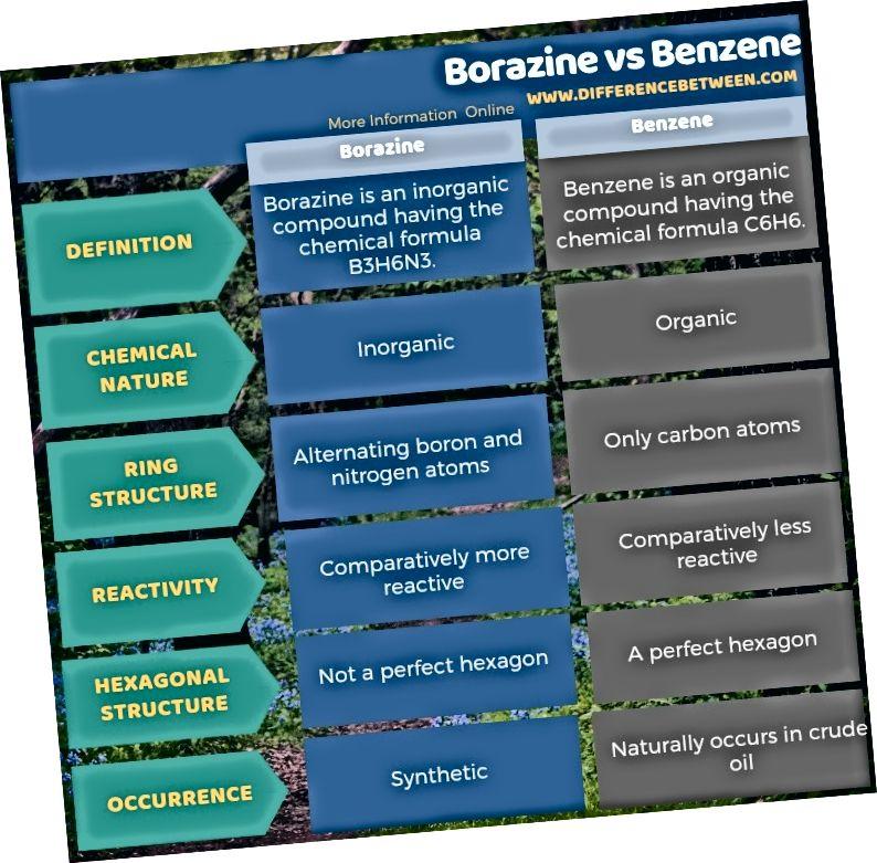 الفرق بين البوريزين والبنزين في شكل جدول