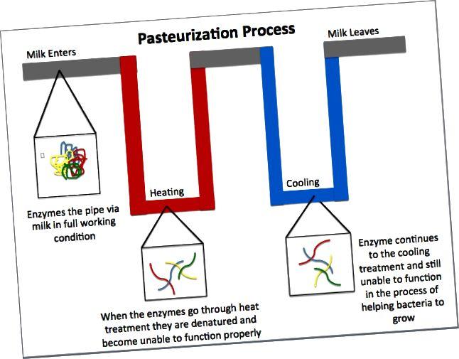 Ënnerscheed tëscht HTST an UHT Pasteuriséierungstechniken