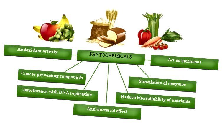 الفرق بين مضادات الأكسدة والمواد الكيميائية النباتية