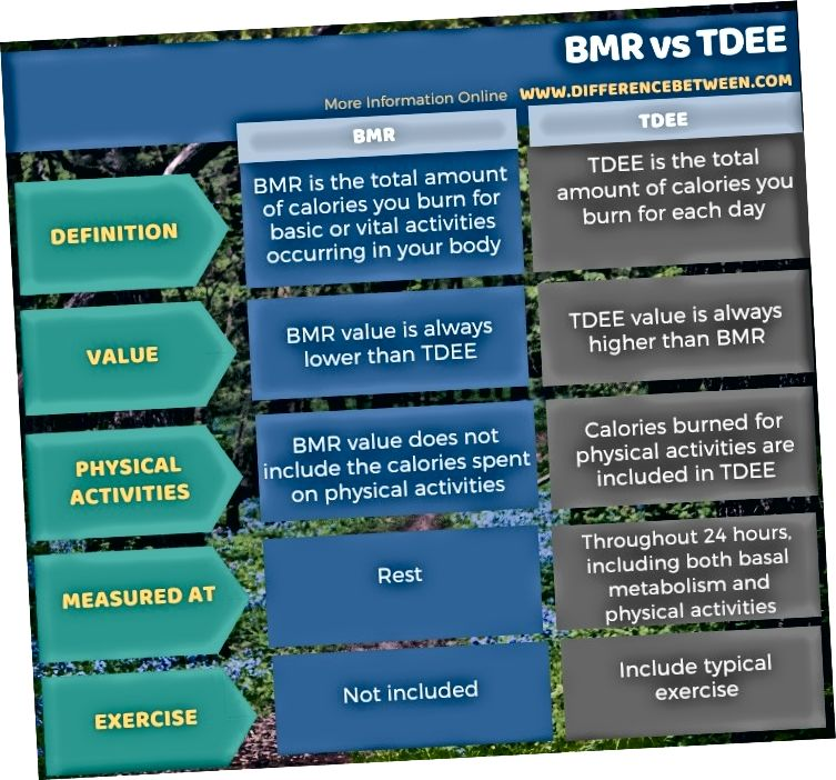 Разлика между BMR и TDEE в таблична форма