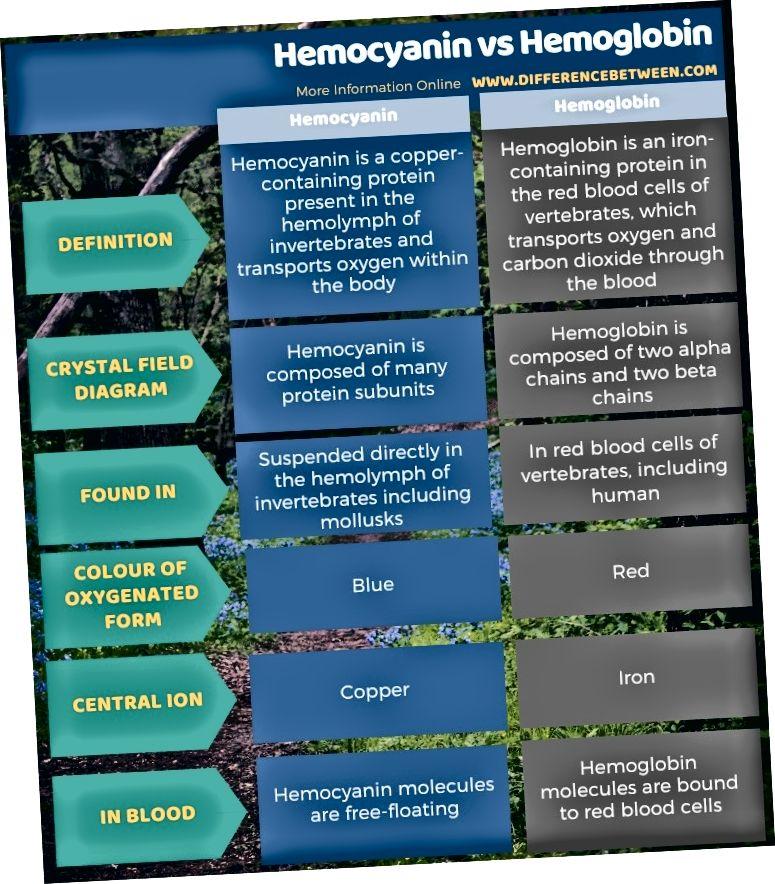 Hemocianīna un hemoglobīna atšķirība tabulas formā