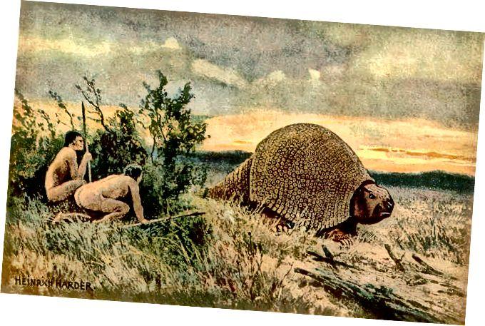 الفرق بين العصر الحجري القديم والعصر الحجري الجديد