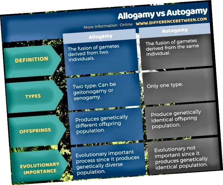 Unterschied zwischen Allogamie und Autogamie in tabellarischer Form