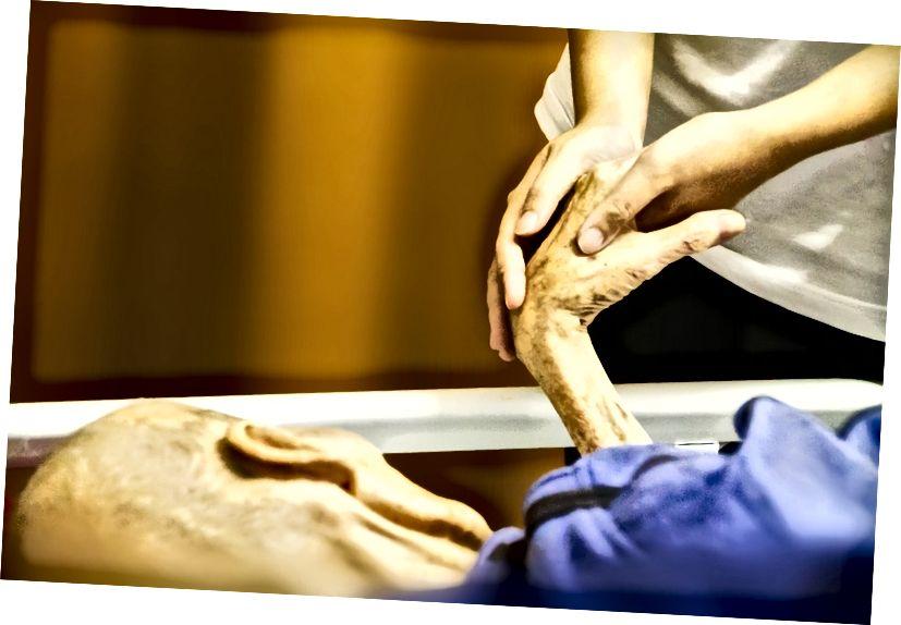 Galvenā atšķirība - Hospice vs pansionāts